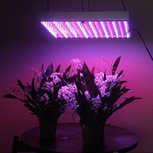 Global Horticulture Lighting Market to Provide the Trends and Opportunities 2019