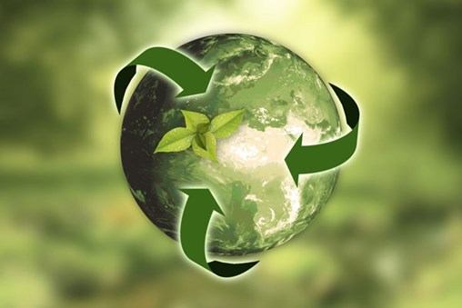 Making your event sustainable