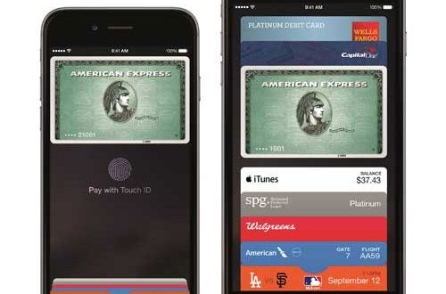 Debit Card Users Take a Liking to Apple Pay and Other Wallets, Pulse's Annual Survey Finds